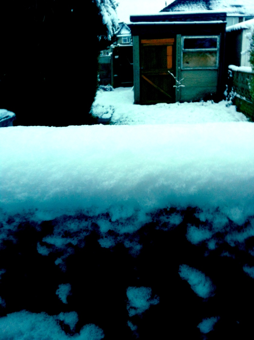 Snow-ometer