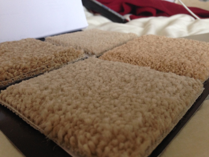And some carpet samples!